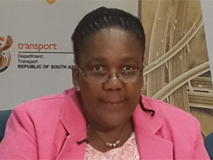 Transport minister Dipuo Peters has reiterated SA will adhere to the user-pays principle.